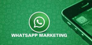 Workshop WhatsApp Marketing